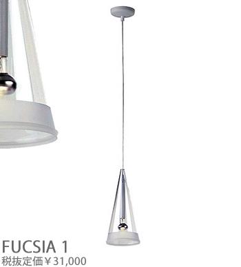 FUCSIA1_1